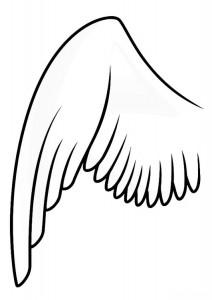 nacktfluegel